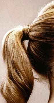 ponytail.png